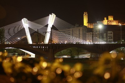 El pont de Príncep de Viana